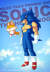 Sonic the hedgehog BADASS by Tohad