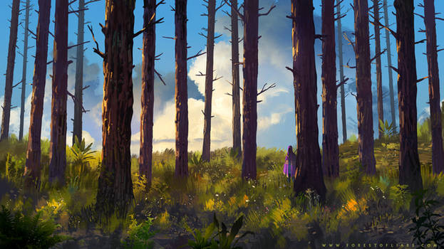 Forest of Liars : the smell of bark