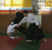 Aikido 3 by Vikilaf