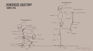 Simplified Human Anatomy Rig