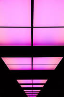 Pink by iTux