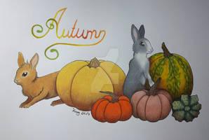 :. Pumpkin Bunnies .: