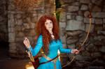 Brave - Princess Merida_5