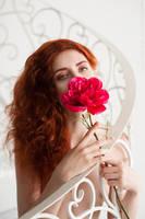 Rose by GreatQueenLina