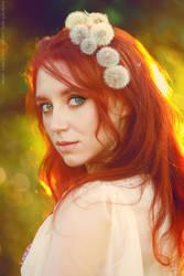 Dandelions by GreatQueenLina