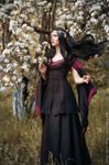 Noldor_3 by GreatQueenLina