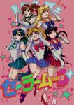 Sailor Senshis Poster