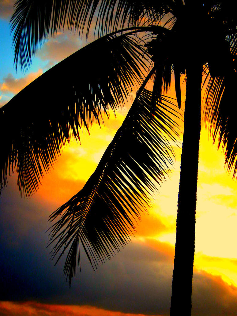 Sunset in Fiji by xx-LoveStory-xx