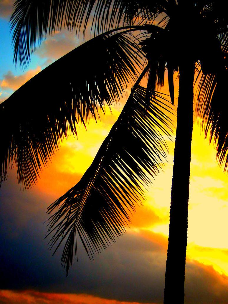 Sunset in Fiji by xx-LoveStory-xx