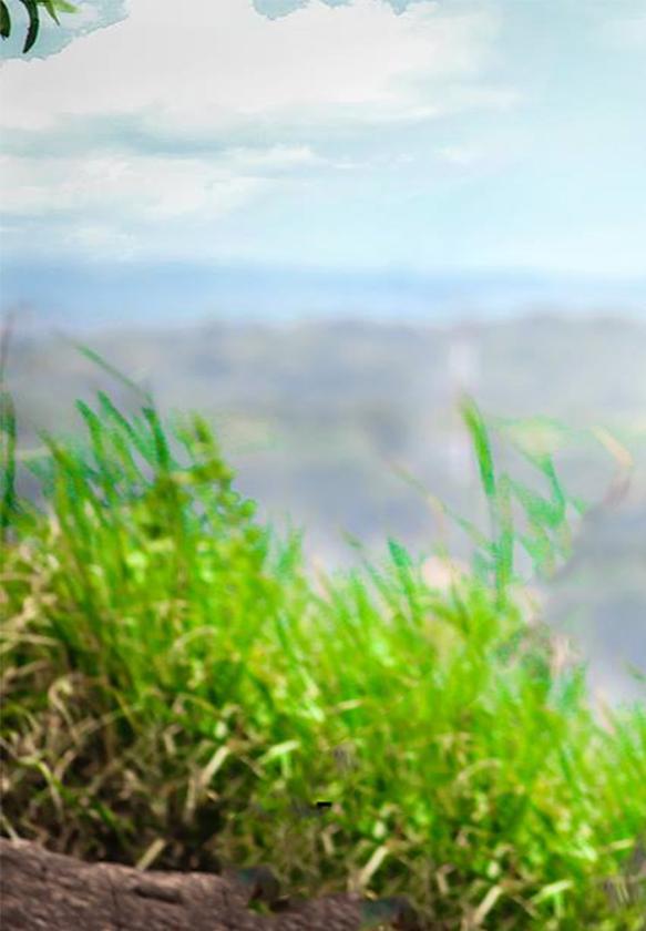 nature  by tapash editz by Tapash-Editz
