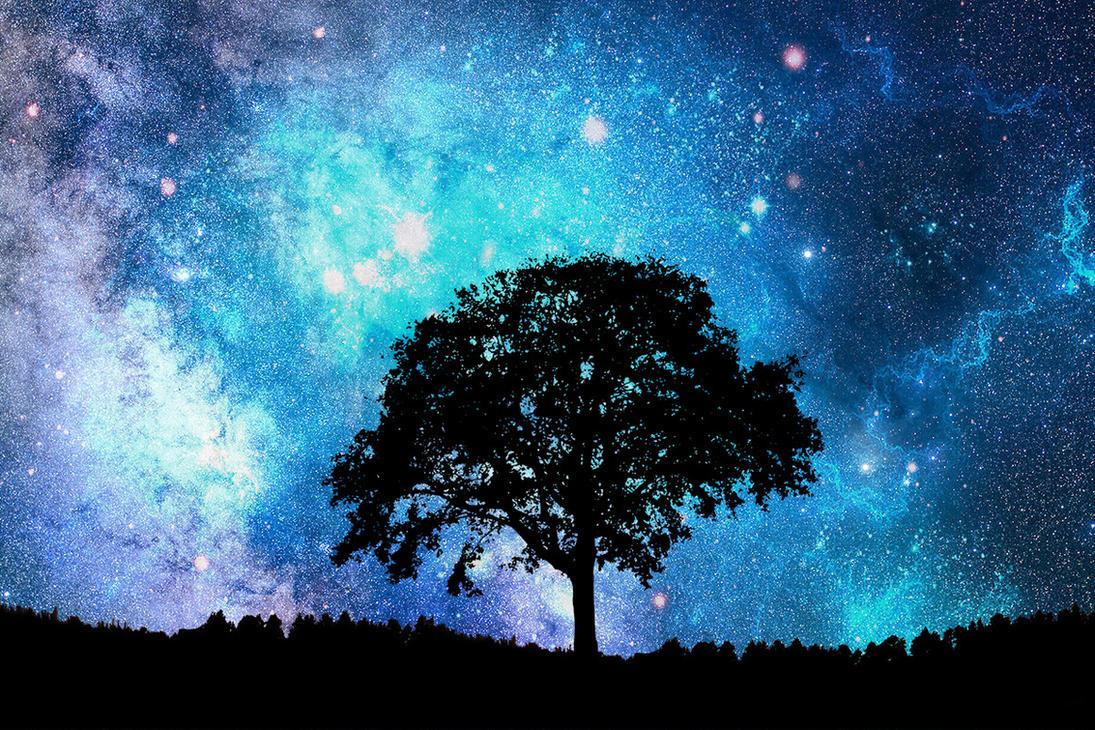 Alone Tree Wallpaper by Angela-White