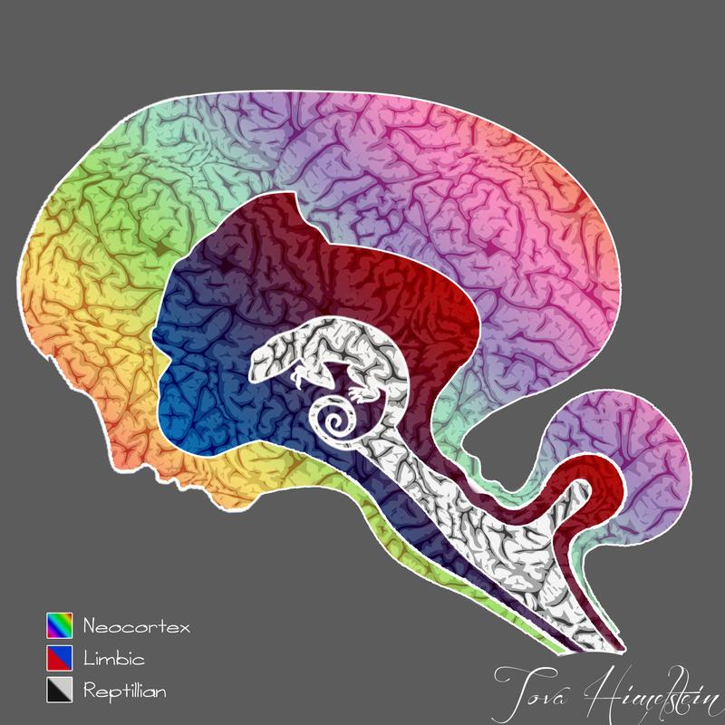 Triune Brain by Brooque613 on DeviantArt