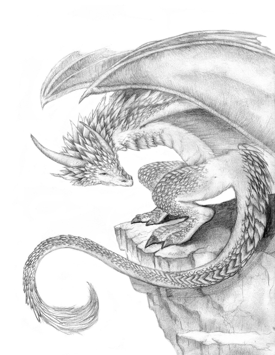 Baby Chinese Dragon Drawings Chinese dragon drawings in