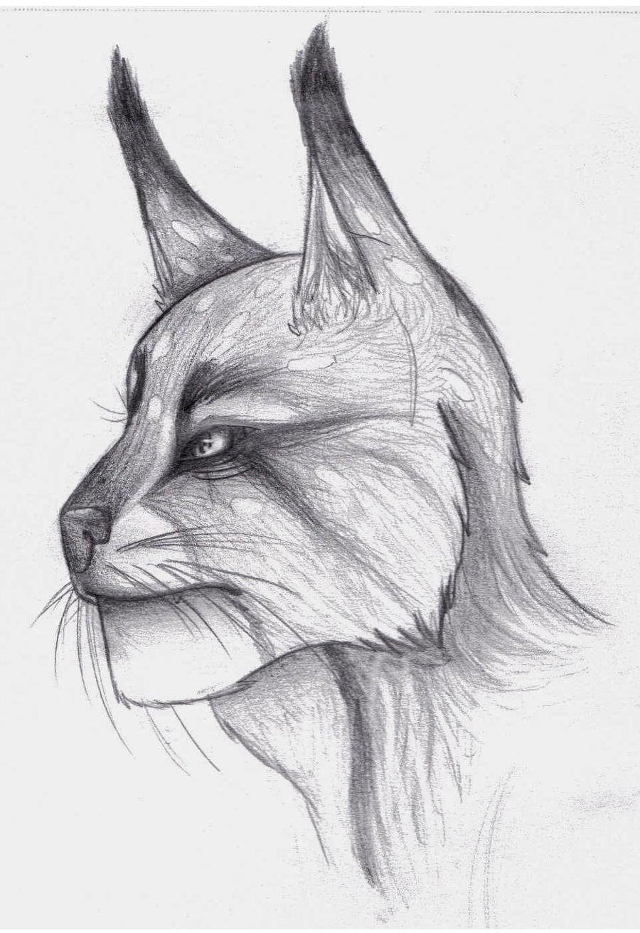 Mah'ko the Khajiit by Okallu