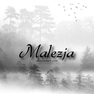 Malezja's Profile Picture