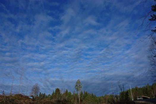 Skyene kommer