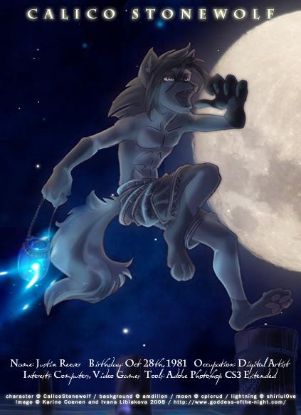 CalicoStonewolf's Profile Picture