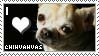 Chihuahua Stamp by pillze69