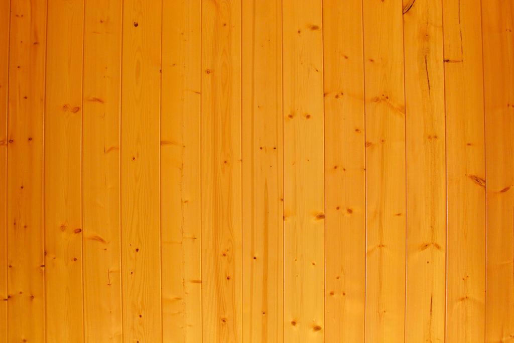 Wood Texture Honey Maple light grain wooden panel  by TextureX-com