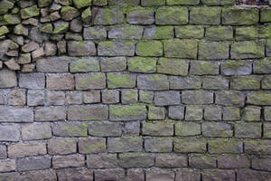 Brick Texture Rock Stone Algea Grey Green Uneven by TextureX-com