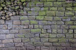 Brick Texture Rock Stone Algea Grey Green Uneven