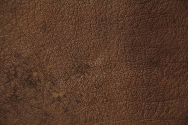 Brown Leather Texture Spotted High Resolution Stoc