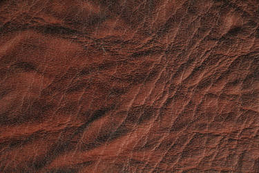 Leather Texture Rough Old Vintage Red Wrinkled Gru by TextureX-com