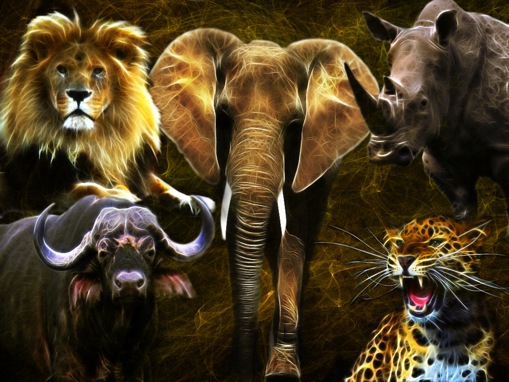 The Big Five by Lolly1123 on DeviantArt
