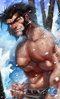 X-Men: Wolverine by dr-conz