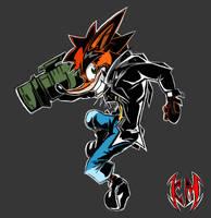 Crash Bandicoot 20 Years by selairy