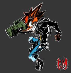 Crash Bandicoot 20 Years