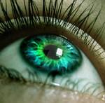 Eye XXIIX