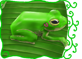 A Frog On a Leaf by HitchhikersGuide101