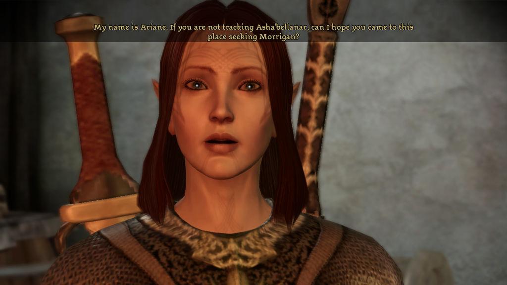 DA WH Ariane the Dalish Elven warrior by SPARTAN22294 on DeviantArt