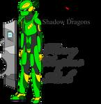 Shadow Dragons- HW Mech