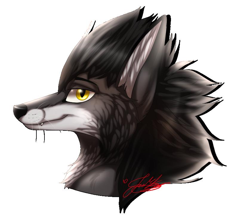 PC: Fox~ by ScottishRedWolf