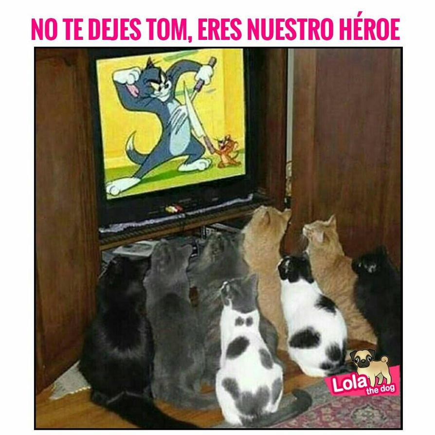 Nuestro Gran Heroe!! by Rosalina-Fan-404