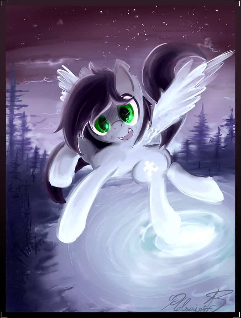 Vylet pony