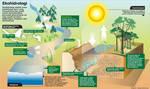 infographic ekohidrology