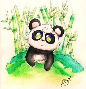 Curious Little Panda