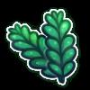 Fir Seaweed