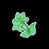 Mintish Flowers