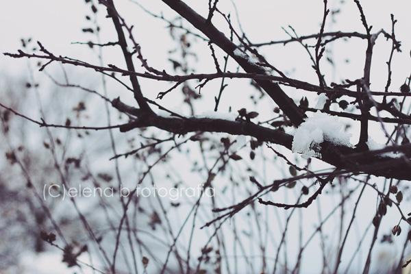 Ice by Pensieri