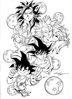 Son Goku stages