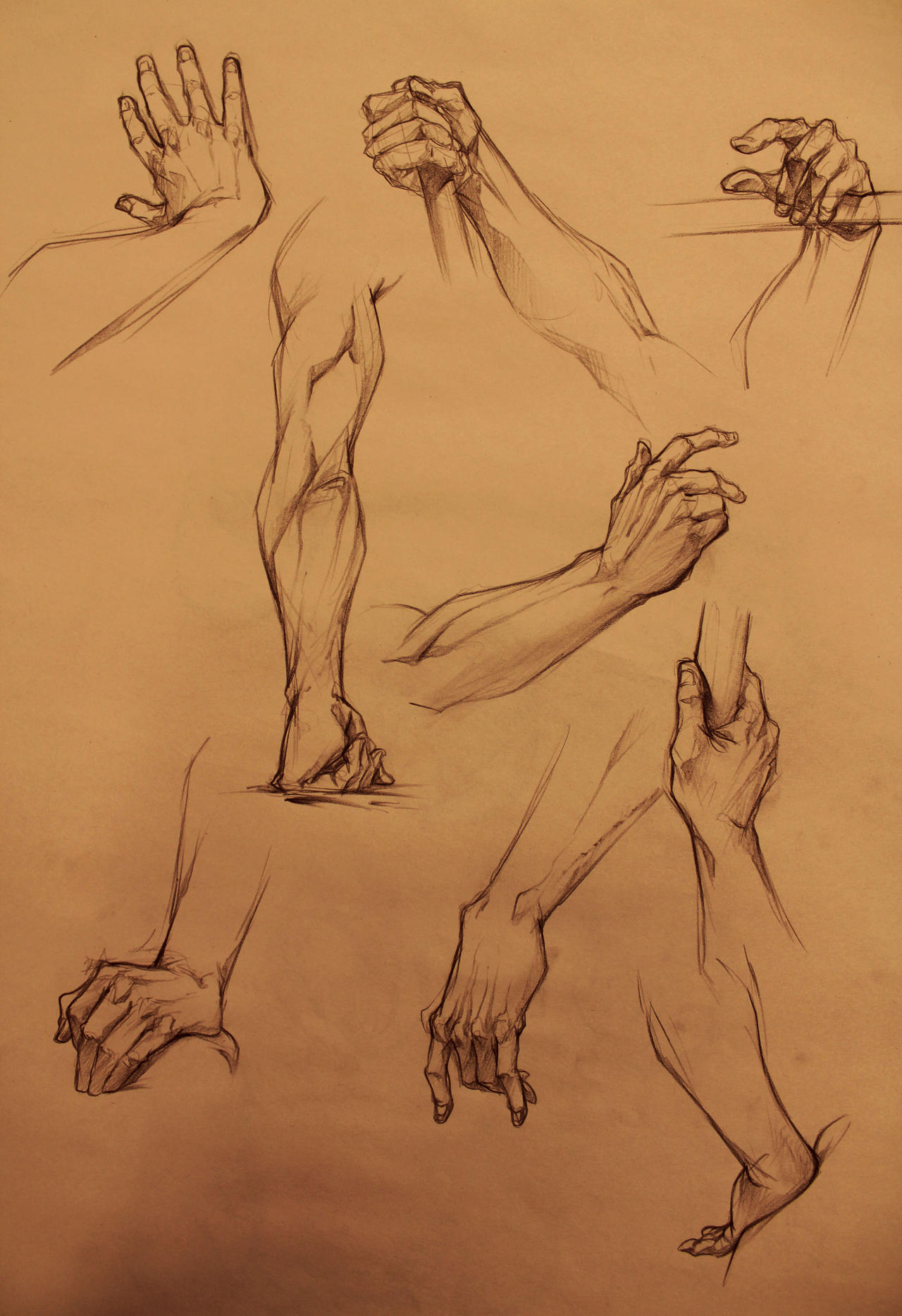 Life Drawing hands by marvelmania