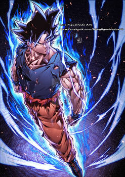 GOKU Ultimate Instinct color
