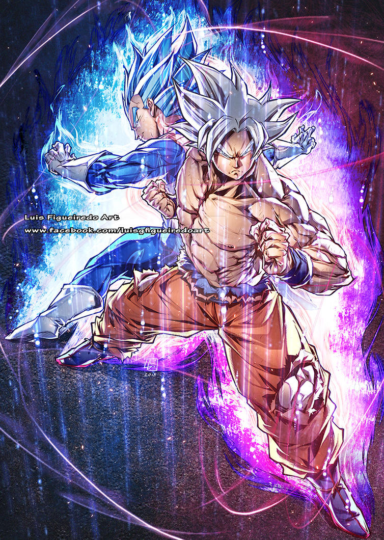 GOKU (MUI) and VEGETA (SSG SSE) Commission by marvelmania