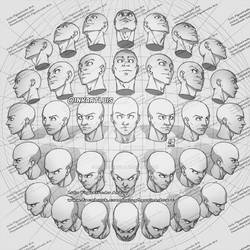 HEADS - DIFFERENT ANGLES PERSPECTIVE