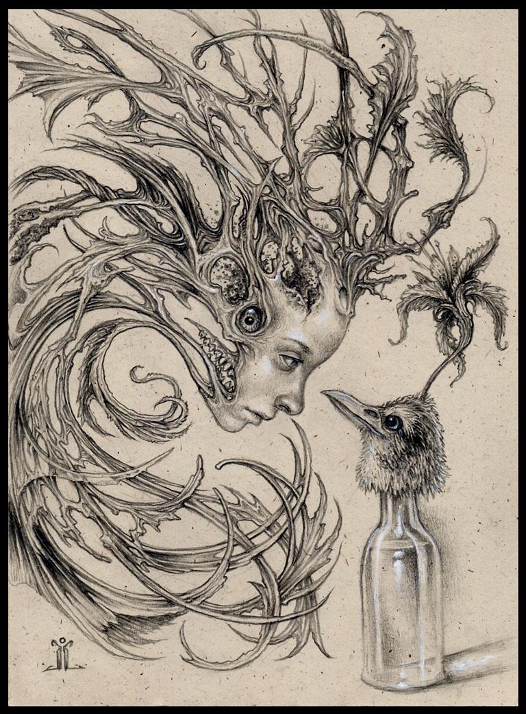 birdliquorandtheboastfulghost by larkin-art
