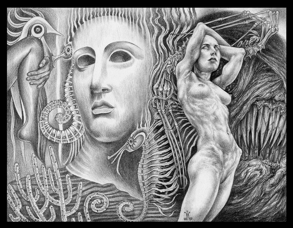Order and Chaos- EC w.Fatima2 by larkin-art